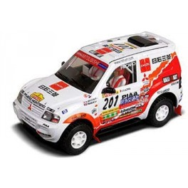 Coche Raid Mitsubishi Pajero Masuoka
