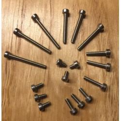 Set de tornillos allen DIN912 A2 variados